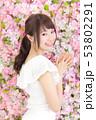 若い女性 ヘアスタイル 53802291
