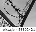 有刺鉄線 53802421
