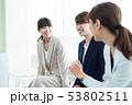 会話するビジネスウーマン 53802511
