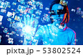 VR 53802524