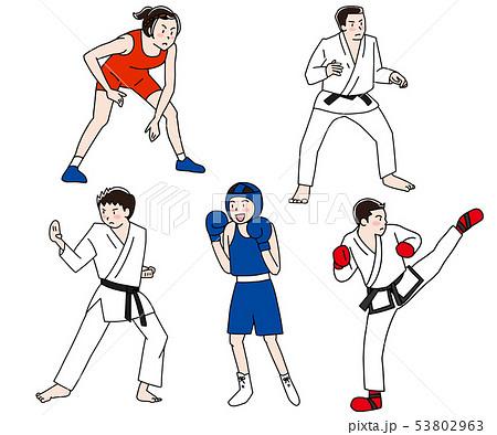 レスリング柔道空手ボクシングテコンドー