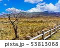 阿蘇中岳火口 【熊本県阿蘇市】 53813068