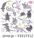 ねずみ ネズミ ベクタのイラスト 53815312