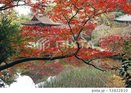 11月 紅葉の長岳寺-大和の秋景色- 53822610