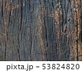 Closeup dried texture of dark brown bark. 53824820