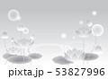 和風素材・蓮(モノクロ) 53827996