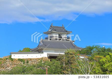 【静岡県】新緑の浜松城 53831605