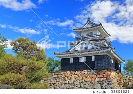 【静岡県】新緑の浜松城 53831621
