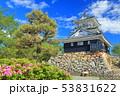 【静岡県】新緑の浜松城 53831622