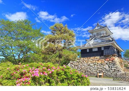 【静岡県】新緑の浜松城 53831624