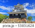 【静岡県】新緑の浜松城 53831628