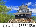 【静岡県】新緑の浜松城 53831630