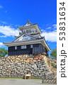 【静岡県】新緑の浜松城 53831634