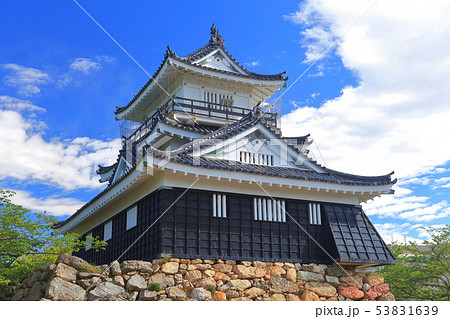 【静岡県】新緑の浜松城 53831639