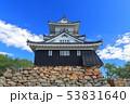 【静岡県】新緑の浜松城 53831640