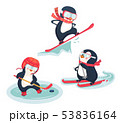 active penguins in winter concept 53836164