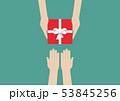 Hands holding gift or present box 53845256
