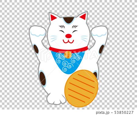 猫 招き猫 小判 53850227