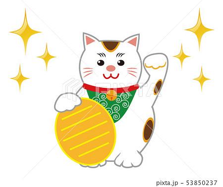 猫 招き猫 小判 53850237