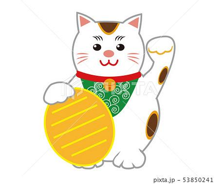 猫 招き猫 小判 53850241