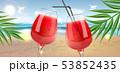 すいか スイカ 西瓜のイラスト 53852435
