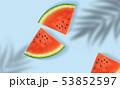 すいか スイカ 西瓜のイラスト 53852597