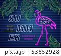 Neon flamingo summer tropic banner Vector. Night 53852928