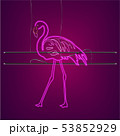 Neon flamingo sign with supports Vector. Night 53852929
