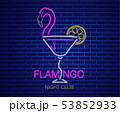 Neon flamingo cocktail sign Vector. Summer exotic 53852933