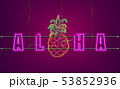 Neon text pineapple sign Vector. Aloha Summer 53852936