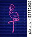 Neon flamingo summer banner Vector. Night club 53852939