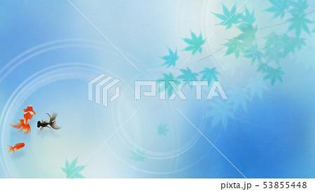 背景-和-和風-和柄-和紙-金魚-紅葉-夏-祭り-水色 53855448
