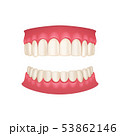 Realistic 3d Detailed Human Mouth with Teeth. Vector 53862146