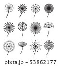 Dandelions Signs Black Thin Line Icon Set. Vector 53862177