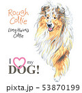 dog Rough Collie breed vector 53870199
