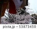 護摩炊きの日 53873450