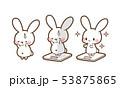 デブ活で太って焦るうさぎ・ダイエットが成功し美しくやせたうさぎ・体重計にのるウサギちゃんイラスト素材 53875865