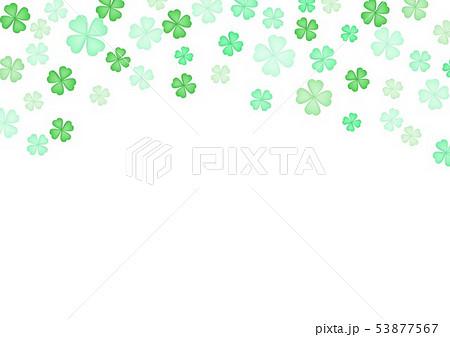 春緑クローバー背景 53877567