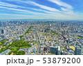 大阪 都市景観 あべのハルカスから北方向    53879200