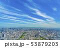 大阪 都市景観 あべのハルカスから北方向    53879203