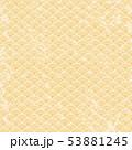 レトロな和柄の背景 53881245