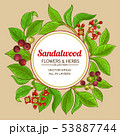 sandalwood vector frame 53887744