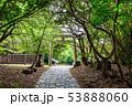 龍宮(鵜戸神社)参道 53888060