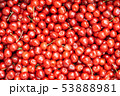 The sweet cherry 53888981
