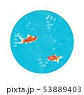 金魚鉢-丸窓-金魚-アクアリウム 53889403