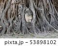 アユタヤ 53898102