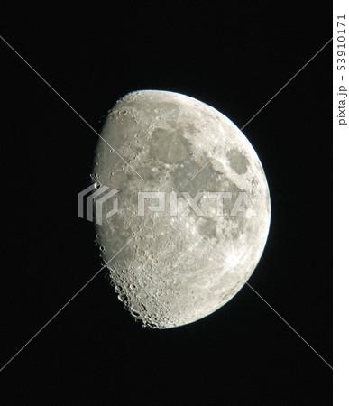 月齢9 53910171