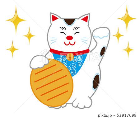 猫 招き猫 小判 53917699