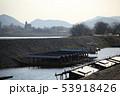 長良川の屋形船  53918426
