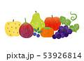 秋 果物 フルーツのイラスト 53926814